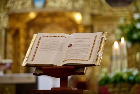Lectura del Santo Evangelio según San Mateo (5,38-42):