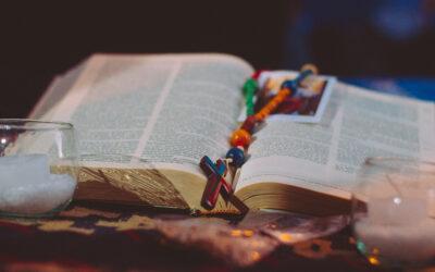 Lectura del Santo Evangelio según San Mateo (11,25-27):